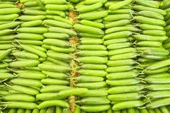 Dieta dell'ortaggio da frutto della disintossicazione di estate della primavera Chiuda su del mucchio del raccolto Supporto del s Fotografie Stock Libere da Diritti