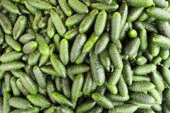Dieta dell'ortaggio da frutto della disintossicazione di estate della primavera Chiuda su del mucchio del raccolto Supporto del s Immagini Stock Libere da Diritti