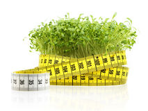 Dieta do Watercress Fotografia de Stock Royalty Free