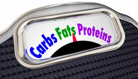 Dieta equilibrada elegante de Fats Proteins Words Scale Eat de los carburadores ilustración del vector