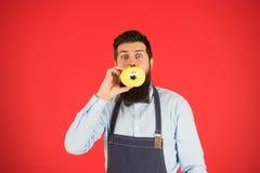 Dieta i zdrowy jedzenie Piekarz je pączek Szefa kuchni mężczyzna w kawiarni kaloria Odczucie głód Brodaty piekarz Brodaty mężczyz zdjęcie royalty free