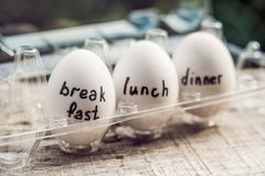 Dieta, jajeczna dieta, śniadaniowy lunchu gość restauracji Fotografia Stock
