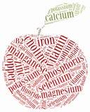 A dieta ou a nutrição da nuvem da palavra relacionaram-se, incluindo minerais Imagem de Stock Royalty Free