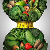 Dieta sana di perdita di peso illustrazione di stock