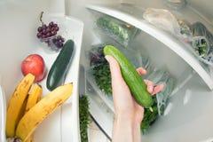 Dieta saudável: Uma mão que agarra um pepino do refrigerador aberto completamente dos verdes Fotos de Stock