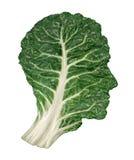 Dieta saudável humana Imagens de Stock Royalty Free