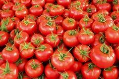 Dieta vegetal del detox del verano de la primavera Ciérrese para arriba de pila de la cosecha Su imagenes de archivo