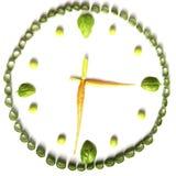 Dieta vegetariana delle verdure sotto forma di orologi, di cipolle verdi, di carote, di basilico e di piselli su un fondo bianco fotografie stock libere da diritti