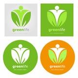 Dieta vegetariana fijada logotipos del alimento biológico del vegano Vida sana del verde de la forma de vida Escritura de la etiq stock de ilustración