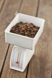 Dieta y escala de Petâs Fotos de archivo libres de regalías