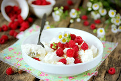 Dietary dessert: fresh cottage cheese with raspberries Royalty Free Stock Photos