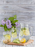 Dietary detox drink with lemon juice, ginger, cucumber and mint leaves in clear water Stock Image
