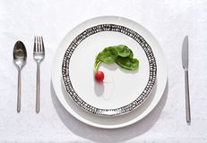 Dietary dinner Royalty Free Stock Photo