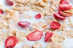 dietary flakes mjölkar jordgubben royaltyfri bild