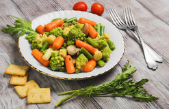 Dietary food salad of steamed vegetables Royalty Free Stock Photos