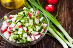 Dietary fresh salad with radish and cucumber. Food closeup Royalty Free Stock Image