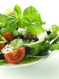 Dietary greek salad Stock Photos
