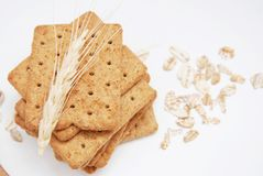 Dietary, Healthy and Low Caloric Grain Crackers on a white background. Dietary, Healthy and Low Caloric Grain Crackers royalty free stock image