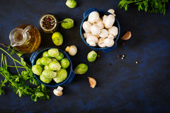 Dietary menu. Ingredients: Vegetables - Brussels sprouts, mushrooms, leeks and herbs on a dark background. Stock Images