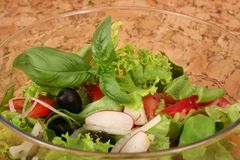 Dietary salad royalty free stock images