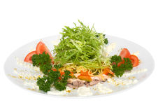Dietary salad. Isolated on white Royalty Free Stock Images