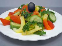 Dietary salad. In plate Stock Image