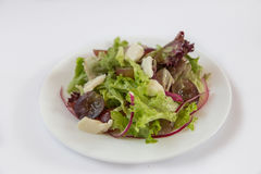 Dietary salad. Grapes, cheese, onions Lettuce. Plate isolated on white background stock photography