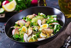 Dietary salad with mussels, quail eggs, cucumbers, radish and lettuce. Healthy food. Seafood salad Stock Photos