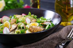 Dietary salad with mussels, quail eggs, cucumbers, radish and lettuce. Healthy food. Seafood salad Royalty Free Stock Photo