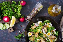 Dietary salad with mussels, quail eggs, cucumbers, radish and lettuce. Healthy food. Seafood salad. Top view. Flat lay Royalty Free Stock Photo