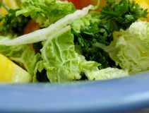 Dietary salad in blue plate Stock Image