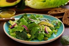 Dietary salad with Romano, Royalty Free Stock Photo
