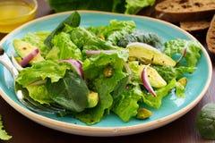 Dietary salad with Romano, Stock Image