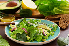 Dietary salad with Romano, onions, Royalty Free Stock Images