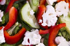 Dietary salad from sliced vegetables - nutritious and healthy fo. A nutritious low-calorie salad made from freshly sliced vegetables, consisting of cucumbers Royalty Free Stock Photo