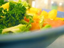 Dietary sunny salad. In blue plate (close-up Royalty Free Stock Images