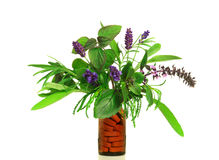 Dietary supplement from fresh herbs Royalty Free Stock Photos