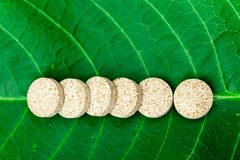 Dietary supplements on a green leaf. Dietary supplements, on a green leaf stock images