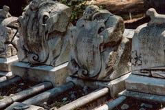 Dieter Cemetery Statuary Statue Bonaventure kyrkogård Savannah Georgia arkivbilder
