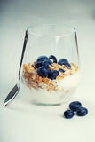 Dietetic breakfast - yoghurt with muesli and huckleberries.  Royalty Free Stock Image