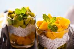 Dietetic dessert. Stock Photo