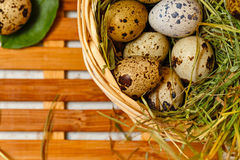 Dietetic quail eggs in a basket. Easter. Stock Photo