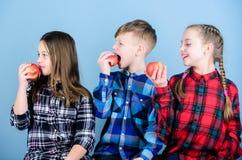 Здоровое питание dieting и витамина Съешьте плод и быть здоровый Время закуски школы Иметь вкусную закуску Подростки группы стоковое фото