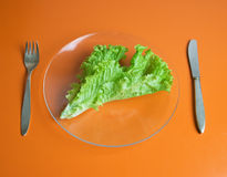 Dieting Stock Images