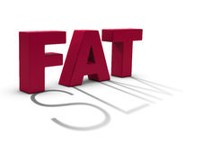Dieting, becoming slim. Word fat and a slim shadow over white background Stock Photo