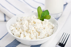 Dieting cottage cheese Stock Photography
