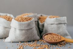 Dieting and nutrition concept. Brown buckwheat harvested in bags,  over grey background. Dry cereals ready for cooking stock photos