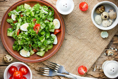 Dieting salad with lettuce, cherry tomatoes, cucumber and quail Stock Images