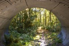 Dietro il tunnel fotografia stock libera da diritti