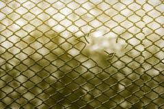 Dietro la rete fissa Fotografia Stock Libera da Diritti